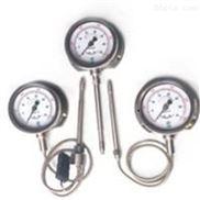 TP3018高温熔体压力传感器
