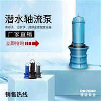铸铁潜水轴流泵厂家价格
