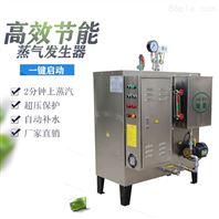 擠出機加熱專用不銹鋼電加熱蒸汽發生器