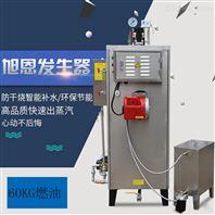 烘干机专用60KG小型燃油蒸汽发生器