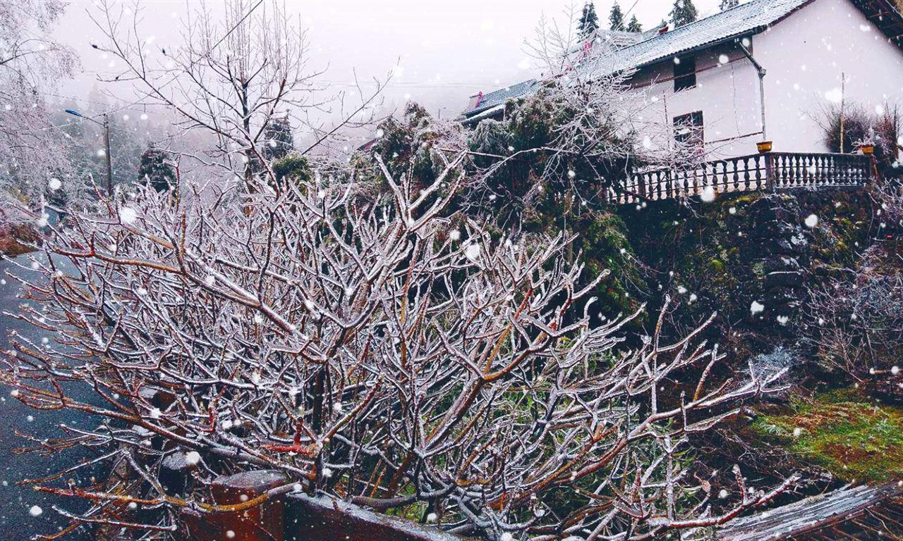 """續話圣誕:天空飄浮的雪花可能是""""塑料雪"""""""