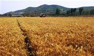 工信部高度重视行业诉求,为企业排忧解难,为保农耕奋发作为